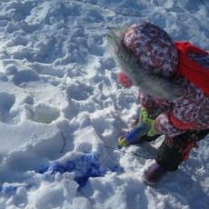 рисование на снегу красками, colour the snow blue