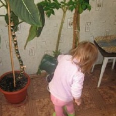 how to water plants with kids